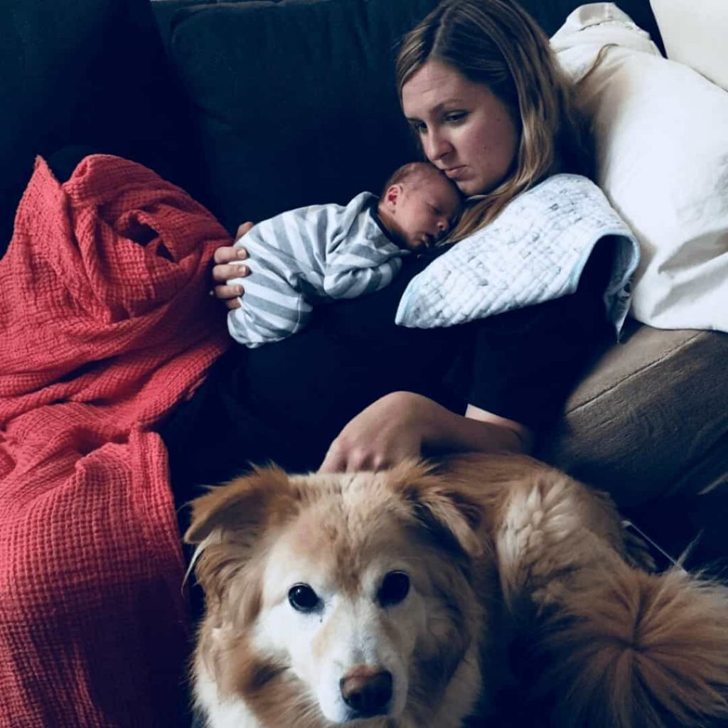 exhausted-postpartum-mom-lying-on-wedge-on-couch-with-newborn-on-her-chest-and-burp-cloth-draped-over-her-shoulder-while-dog-sits-in-front-of-her
