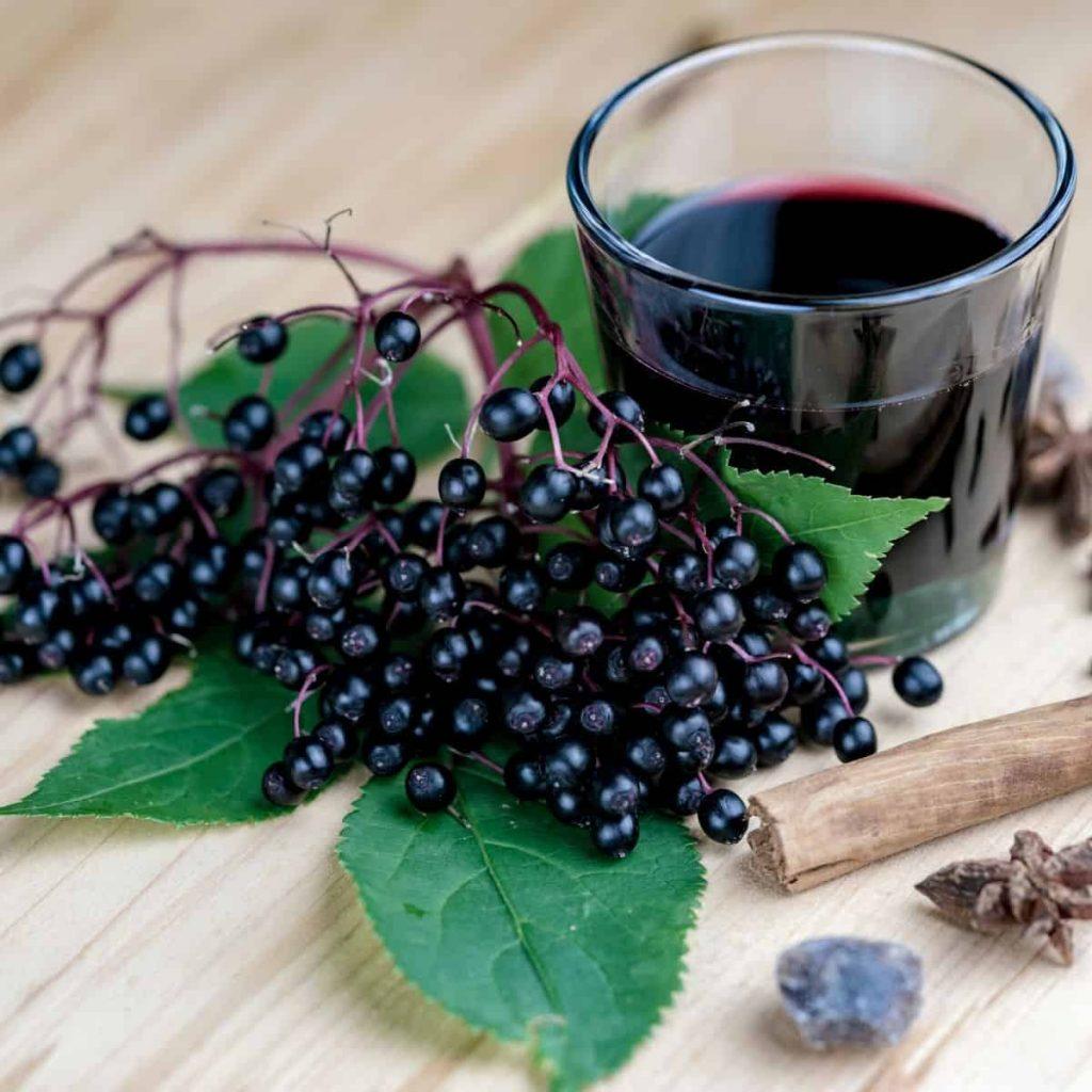 elderberries with a glass of elderberry juice which has grown in popularity in recent years