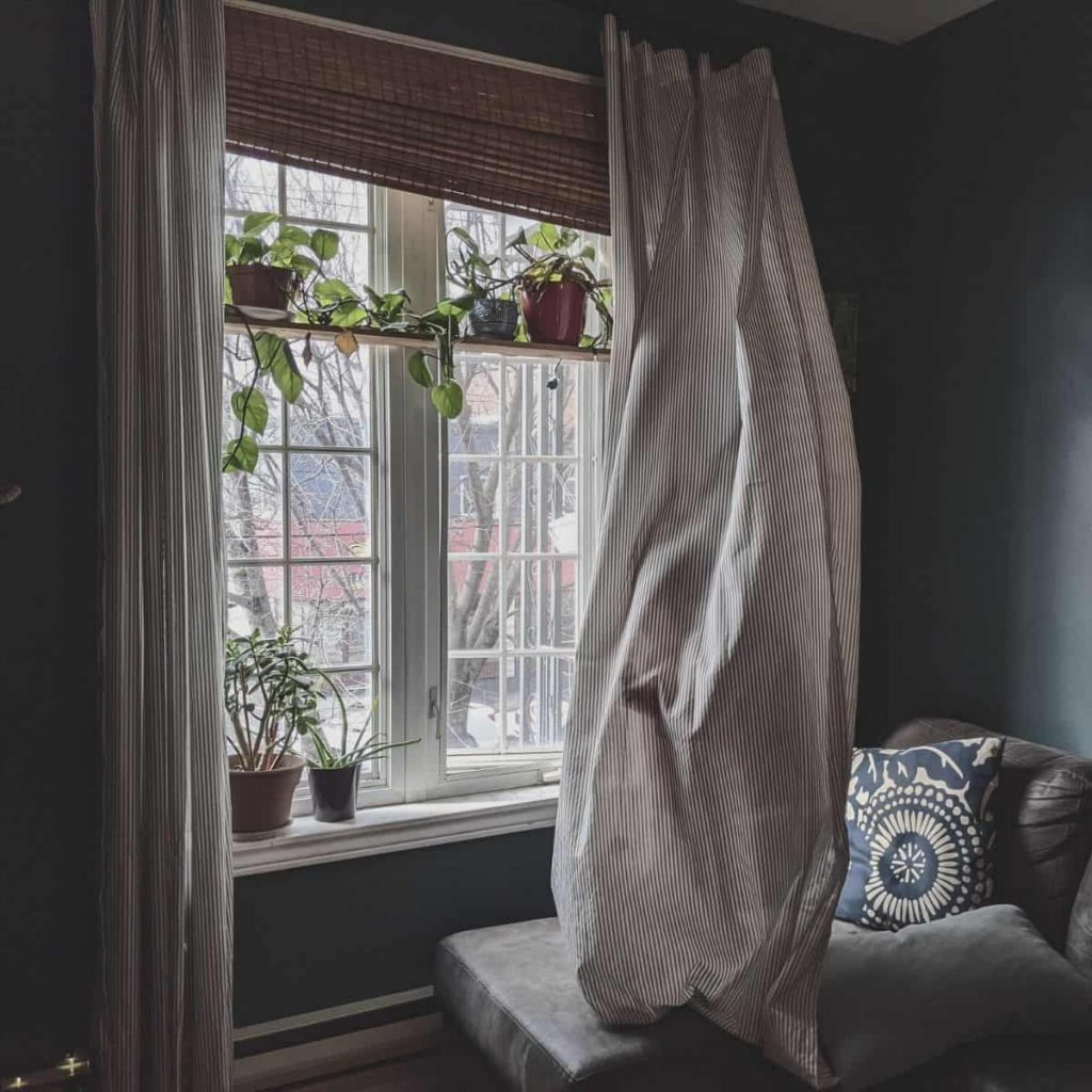 living room window with plants in it while a child plays in the curtains