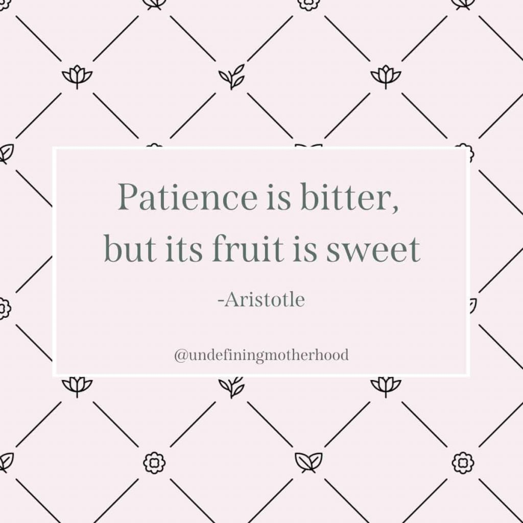 pink background with deep green text that says patience is bitter but its fruit is sweet by aristotle