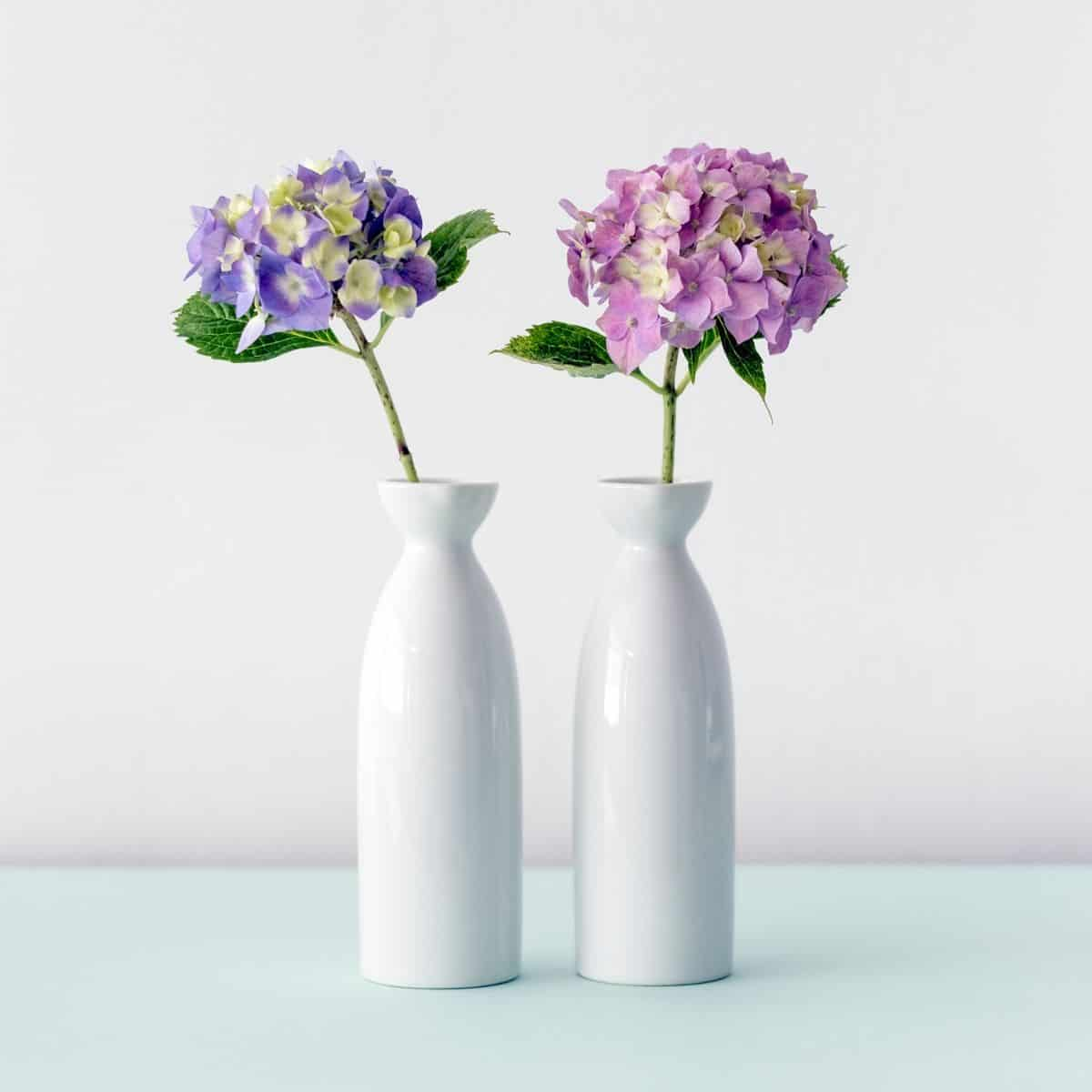 two vases holding purple and pink flowers