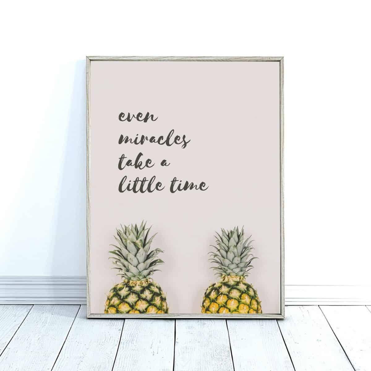 "wall art with two pineapples and text that reads ""even miracles take a little time"""
