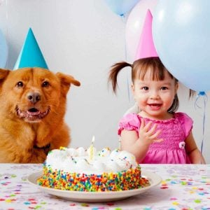 Toddler, Dog, and Birthday Cake