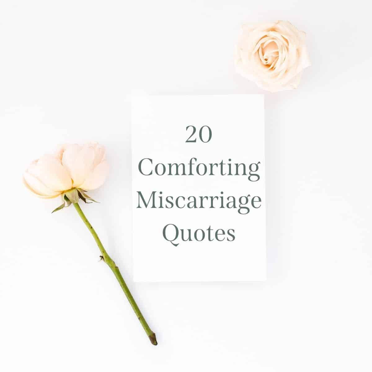 soft flowers with paper in the middle that says 20 comforting miscarriage quotes