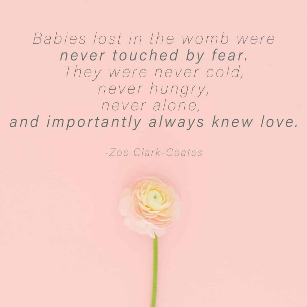 pink background with flower and text that says Babies lost in the womb were never touched by fear. They were never cold, never hungry, never alone,  and importantly always knew love by zoe clark coates